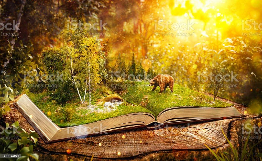 Abriu o livro - foto de acervo