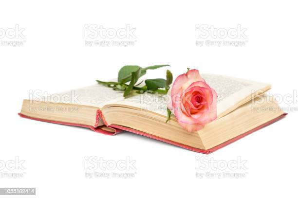 Opened book with pink rose on white background picture id1055162414?b=1&k=6&m=1055162414&s=612x612&h=2cn9up2bq m68ndlolpdsynctfun2x9jec5stsvrila=
