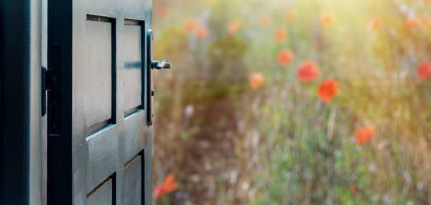 abierto concepto de puerta al hermoso y campo de amapolas imaginario - free images fotografías e imágenes de stock
