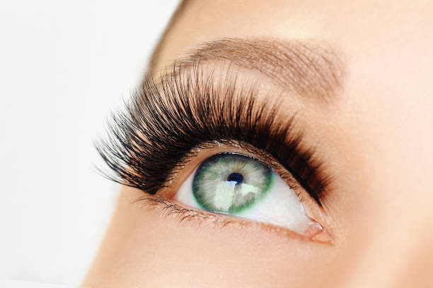 Opened female eye with long false eyelashes stock photo
