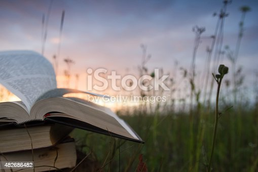 istock Opened hardback book with fanned pages on blurred nature background 482686482