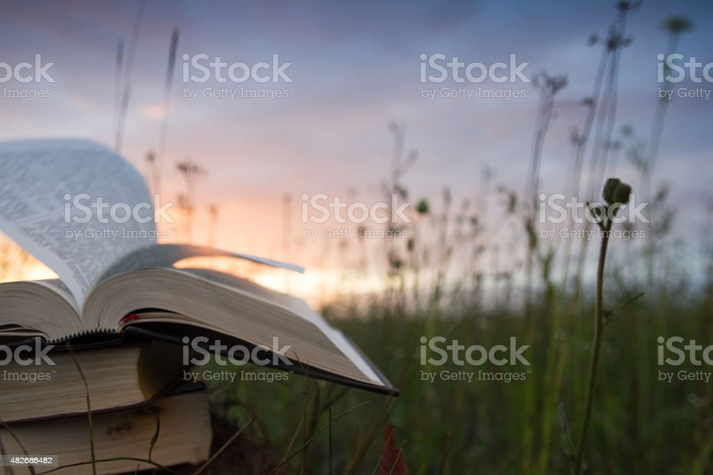 Opened hardback book with fanned pages on blurred nature background stock photo