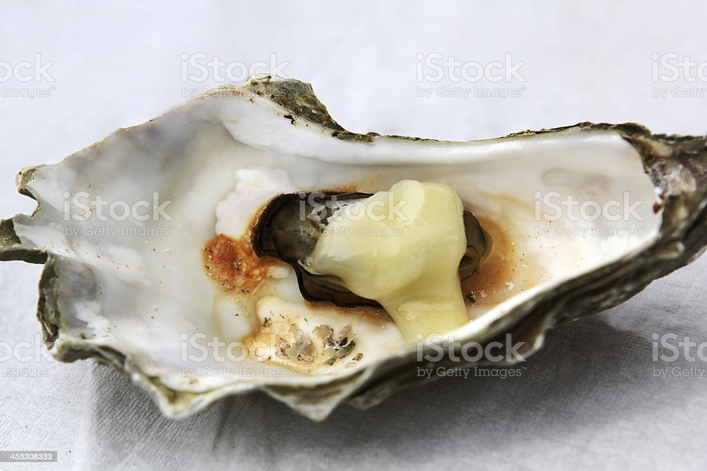 Opened oyster royalty-free stock photo