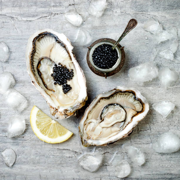 abrir las ostras con caviar de esturión negro y limón sobre el hielo en el fondo de hormigón gris. ponen la vista superior, plana, espacio de copia - caviar fotografías e imágenes de stock