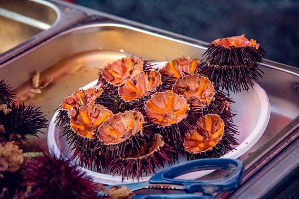 opened sea urchins at Catania fish market, Sicily stock photo