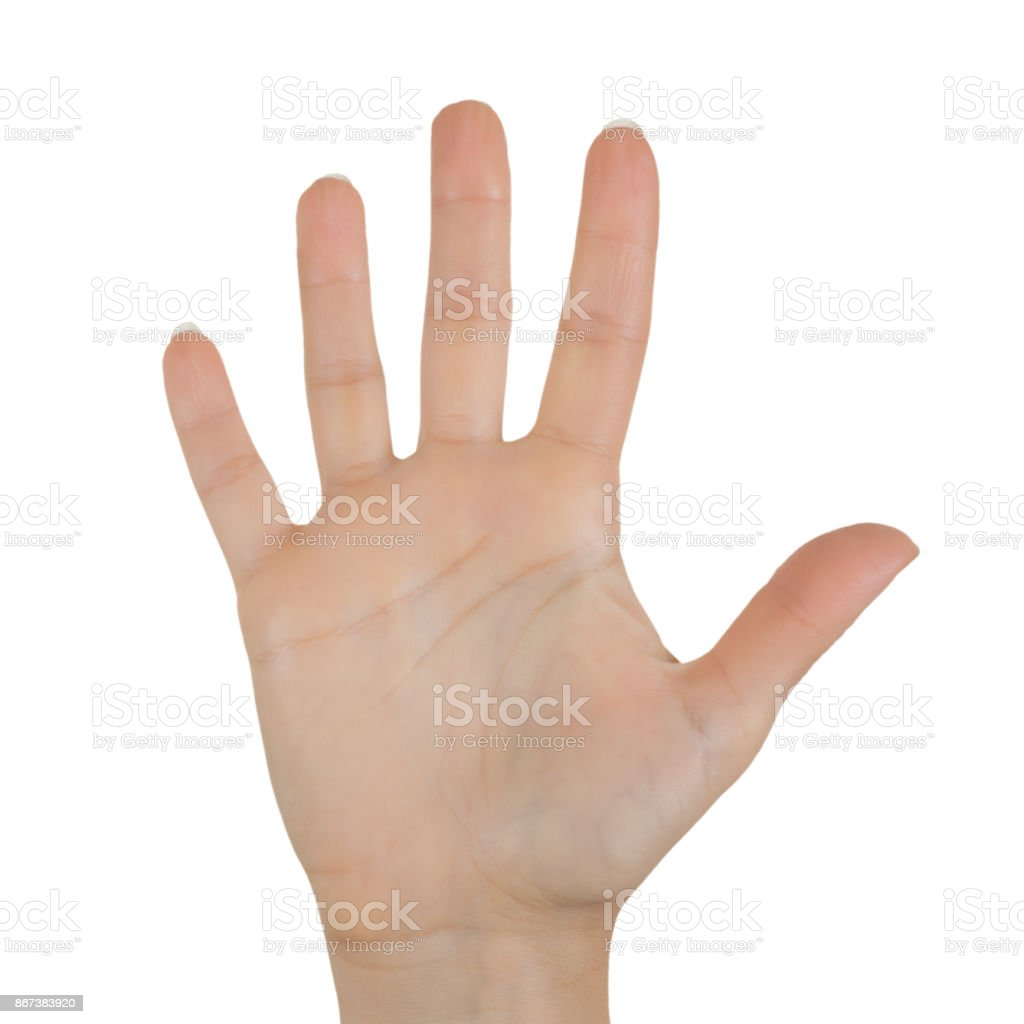 Opened Woman Hand Palm stock photo