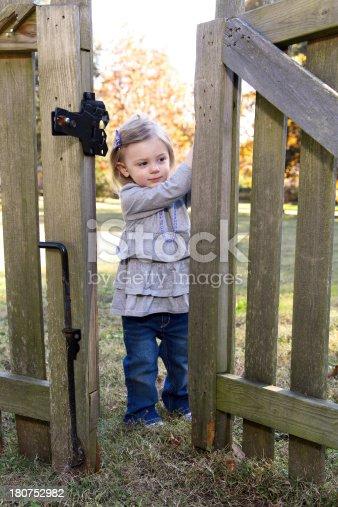 istock Opening Gate 180752982