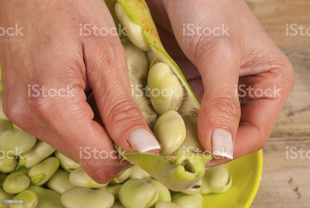 Opening the pod royalty-free stock photo