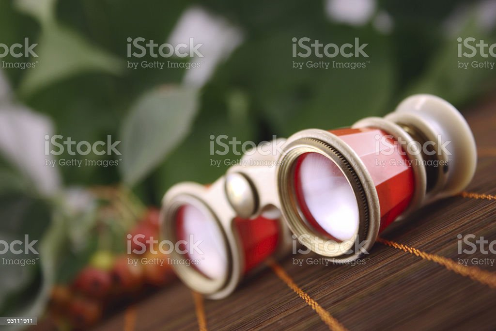 Opera glasses on the dark royalty-free stock photo