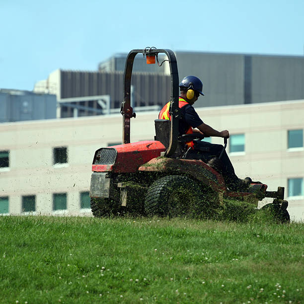 operating a ride on mower - riding lawn mower stock photos and pictures