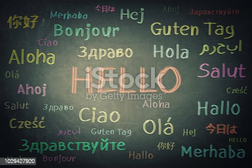 istock Opportunity for learning many languages for students 1029427920