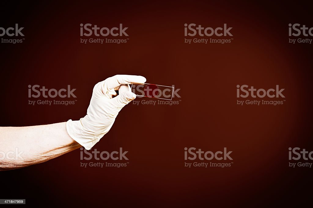 CSI or lab technician holds microscope slide with blood sample royalty-free stock photo