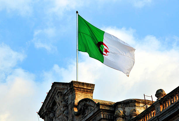 oran, algeria: algerian flag - city hall - algeria stock photos and pictures