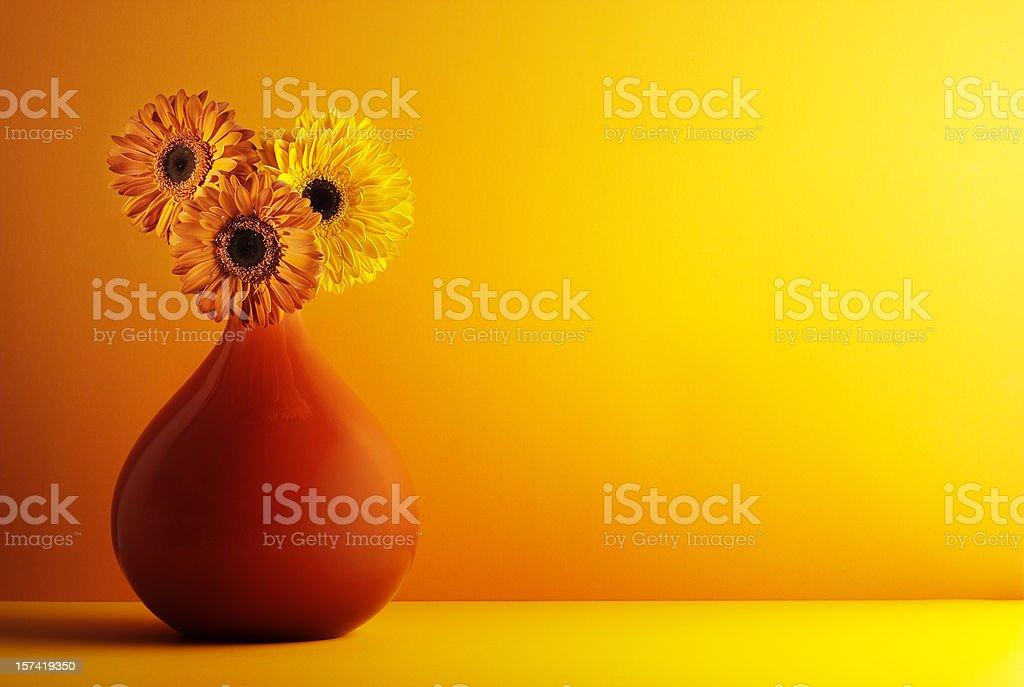 Orange an yellow gerbera in red vase. royalty-free stock photo