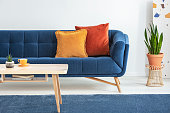 istock Orange and red cushions on a fancy, navy blue sofa and a basic, wooden coffee table on a blue rug in a white living room interior. Real photo. 1041057724