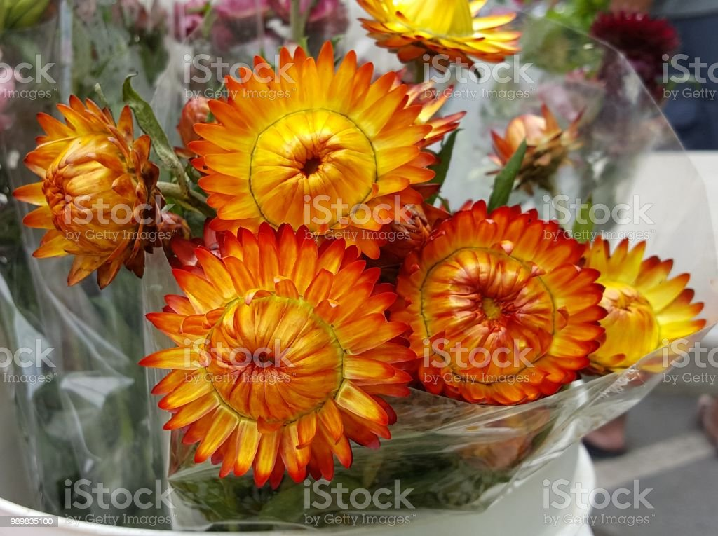 Orange And Yellow Colored Flower Bouquet Stock Photo More Pictures