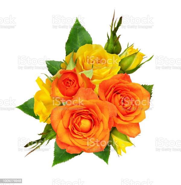 Orange and yellow rose flowers and leaves in a floral arrangement picture id1009276948?b=1&k=6&m=1009276948&s=612x612&h=3cyazjpkqye3mgoijdnevq1lup zc4aq94reg0fkwhs=