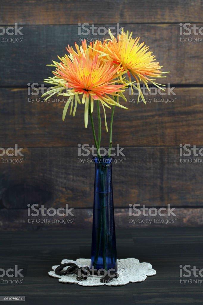 Orange and Yellow Spider Mum in vase. - Royalty-free Antique Stock Photo
