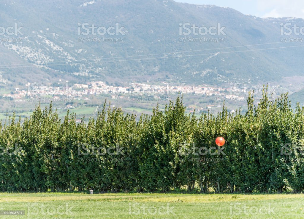 Orange Ball Above Green Field in Italian Mountains stock photo