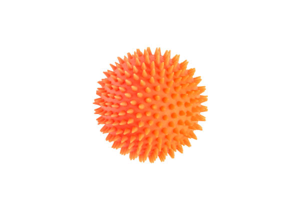 Orange ball for dog teeth isolated on white background. Dog's toy for gnawing. spiked stock pictures, royalty-free photos & images