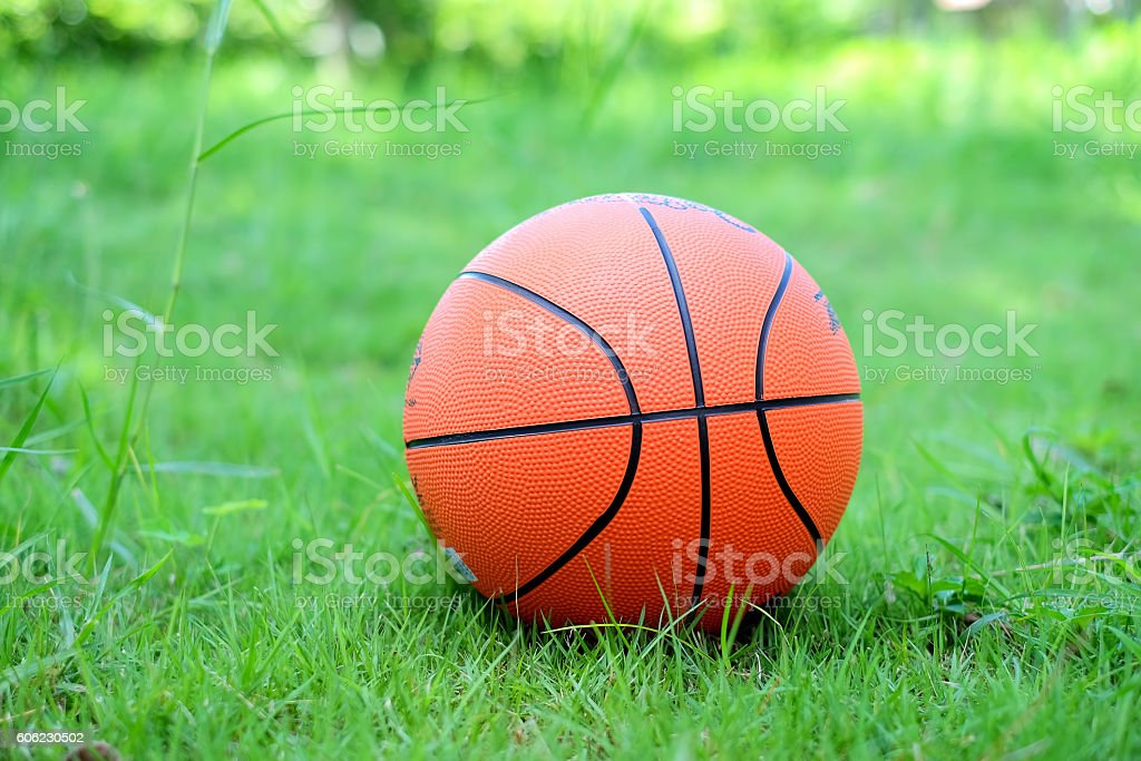 Orange basketball on  the green grass. stock photo