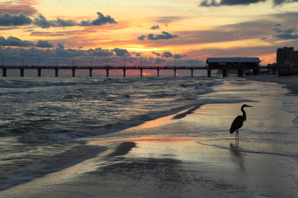 orange beach, alabama - golfküstenstaaten stock-fotos und bilder