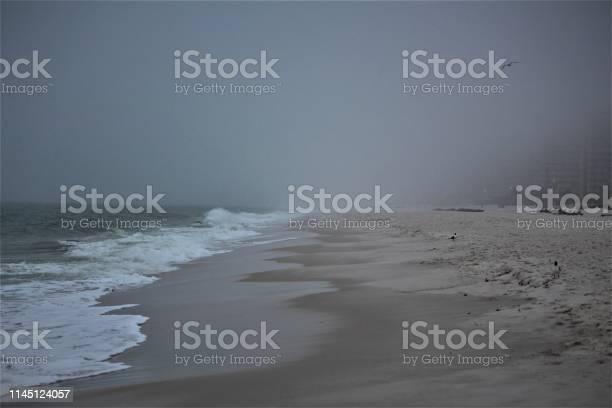 Photo of Orange Beach Alabama