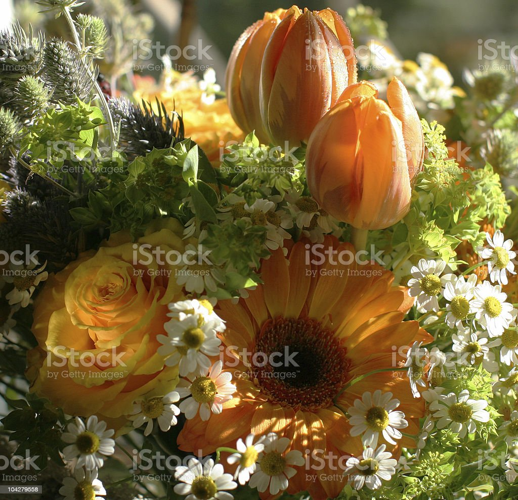 orange bouquet royalty-free stock photo