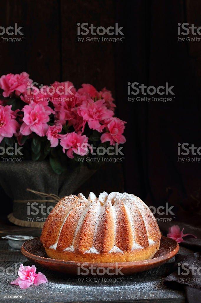 Orange cake sprinkled with powdered sugar stock photo