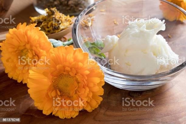 Orange calendula flowers with calendula cream picture id861376246?b=1&k=6&m=861376246&s=612x612&h=h127okdepn 9rdvkq1a3a0tqirzirsdsfdpy4f ciao=