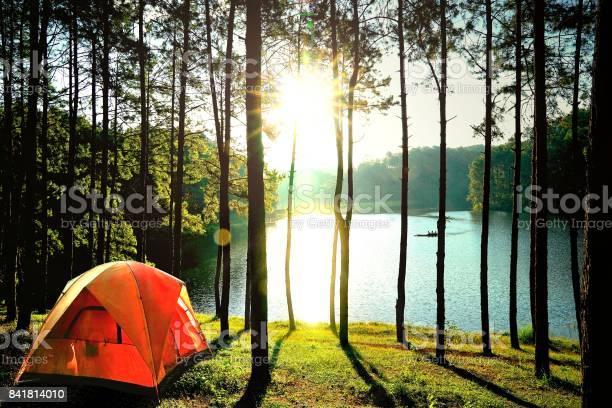 Orange Camping Zelte Im Kiefernwald Am See Am Pang Oung See Mae Hong Son Thailand Stockfoto und mehr Bilder von Abenteuer