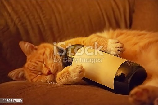 istock Orange cat lying on the couch in an embrace with a bottle of wine. Ginger cat 1139617699