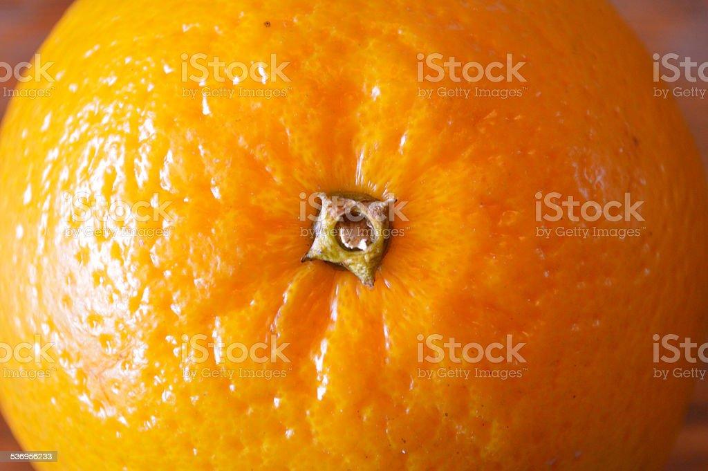 Orange closeup stock photo