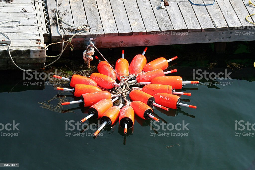 Orange Floats royalty-free stock photo