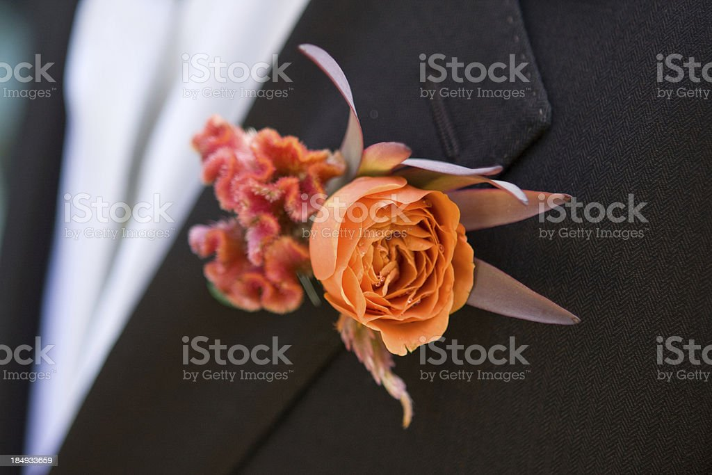Orange flower in  buttonhole of a black smoking royalty-free stock photo