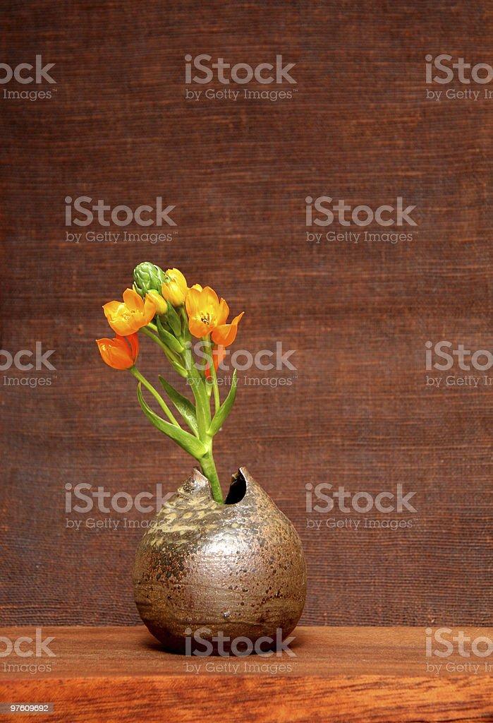 Orange flower in japanese vase royalty-free stock photo