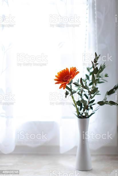Orange flower picture id459403245?b=1&k=6&m=459403245&s=612x612&h=lqqhemhannw9asolv4b9wtr0i0cbcjspzqmvmha7xoc=