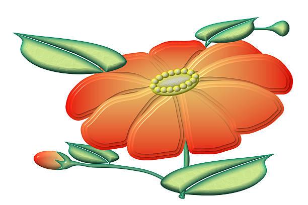 Orange Flower – Foto