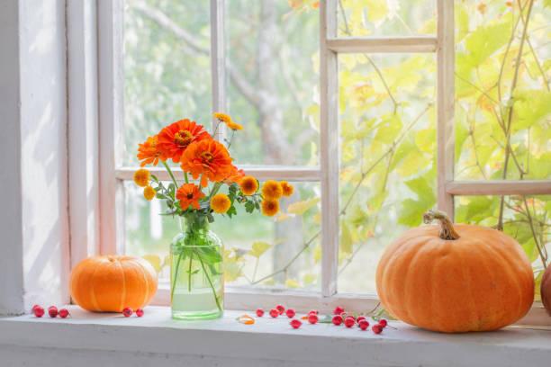 orange flowers in vase with pumpkins on windowsill stock photo