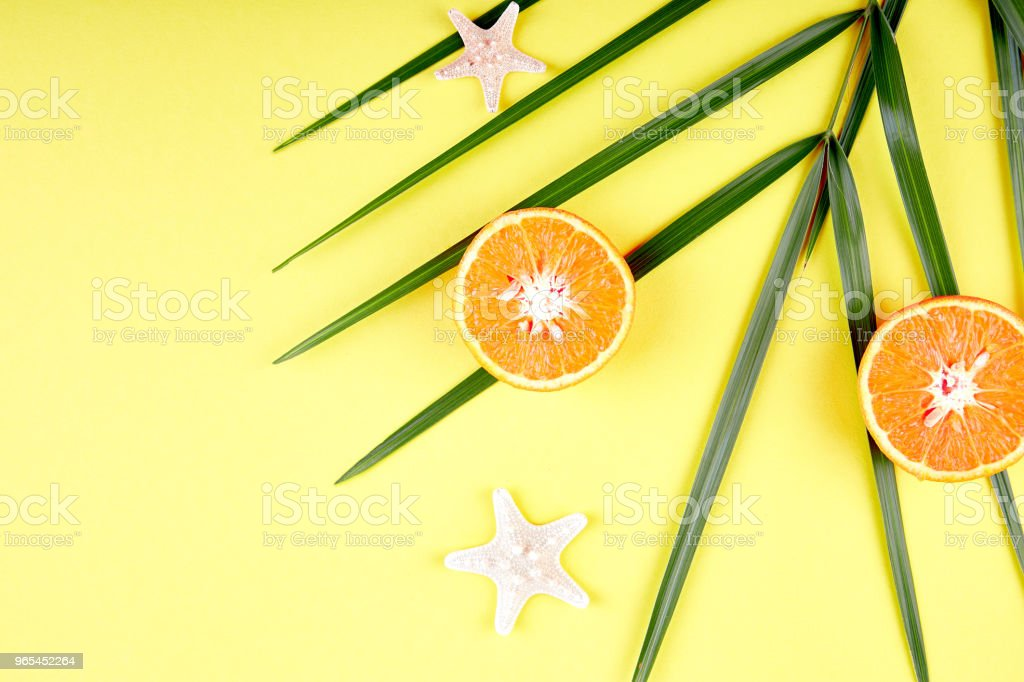 Orange fruit, starfish and palm leaves royalty-free stock photo