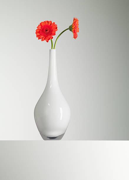 Orange gerbera daisies in vase picture id103332824?b=1&k=6&m=103332824&s=612x612&w=0&h=iasmshxobveugzdnf0yv3tacjl12rztwgbpjb8k0uza=
