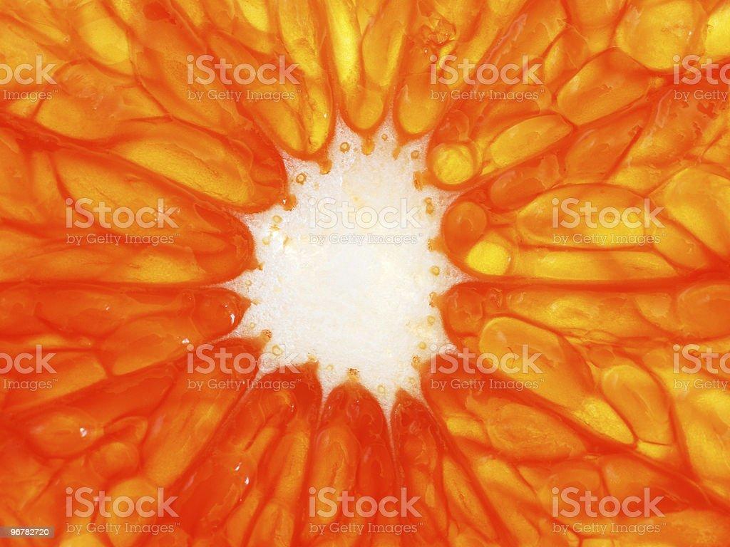 Orange grapefruit slice, macro royalty-free stock photo