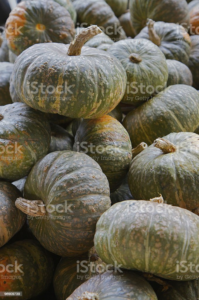 Orange Green Gourds royalty-free stock photo