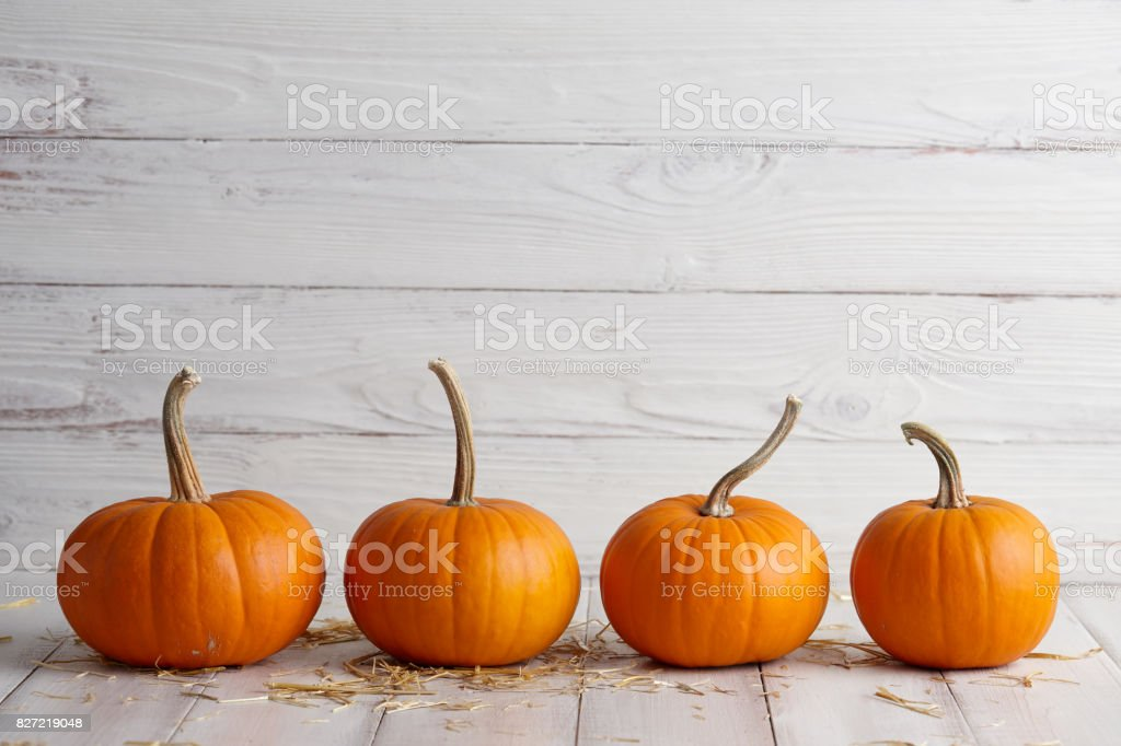 Orange halloween pumpkins on white planks stock photo