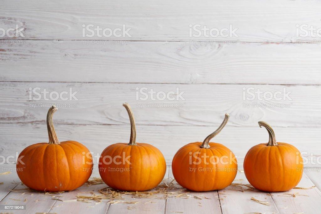 Abóboras de halloween laranja em tábuas brancas - foto de acervo