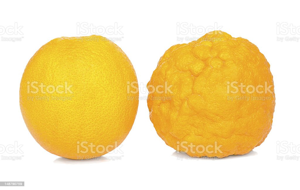 Orange healthy and sick. stock photo