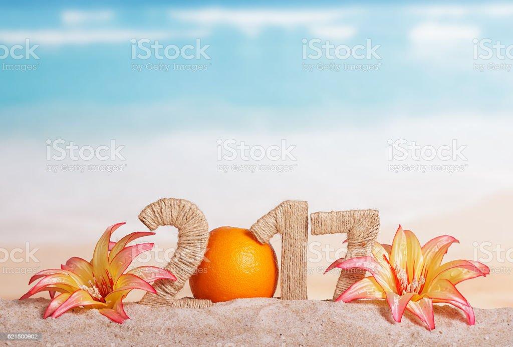 Orange instead number 0 in amount 2017, flowers against sea. photo libre de droits
