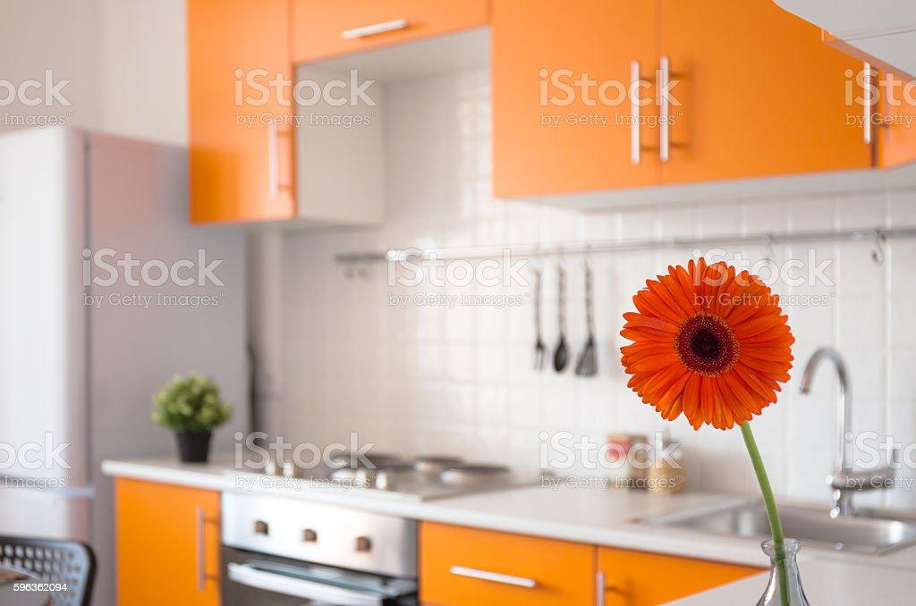 Orange kitchen with flower royalty-free stock photo