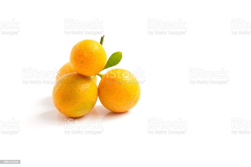 Orange Kumquat placed on white background stock photo