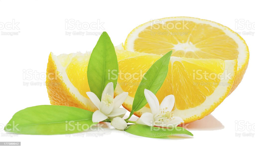 Orange, leaf, flower and slice stock photo
